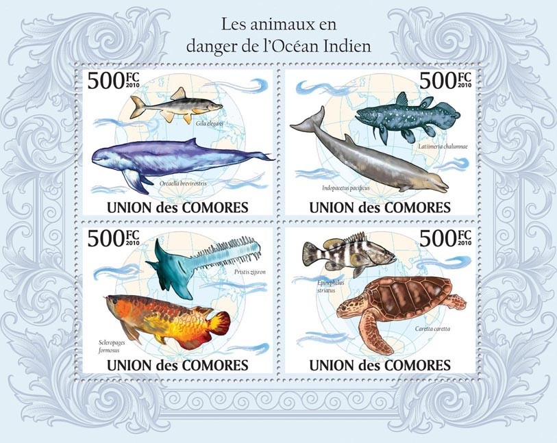 Endangered Animals of Ocean of India, Dolphins, Fishes, Turtles - Issue of Comoros postage stamps