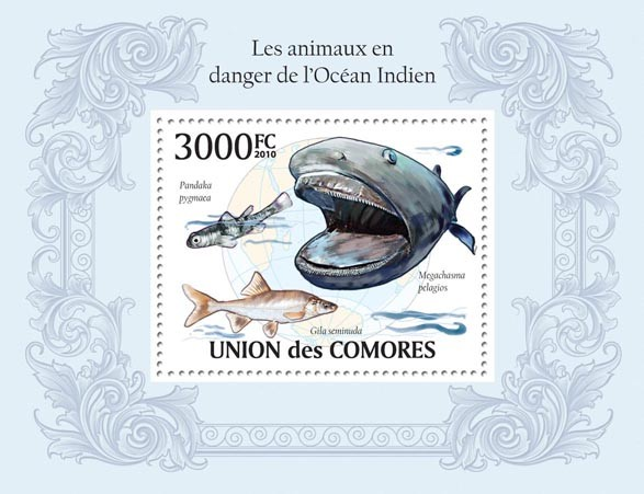Endangered Animals of Ocean of India,Shark & Fishes - Issue of Comoros postage stamps