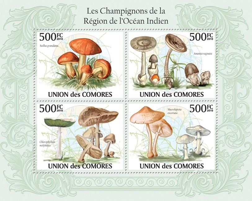 Mushrooms in Region of Indian Ocean, (Suillus granulatus, Amanita vaginata, etc.). - Issue of Comoros postage stamps