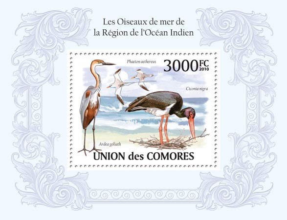 Birds in Region of Indian Ocean,  (Ardea goliath, Ciconia nigra, Phaeton aethereus) - Issue of Comoros postage stamps