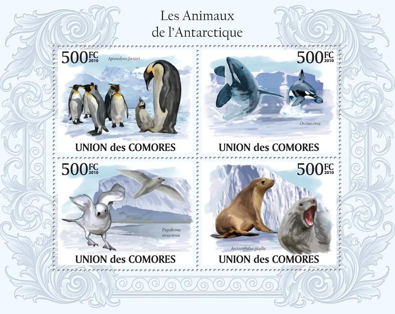Antarctic Animals, Penguins, Orcas, Birds, Sea Lions. - Issue of Comoros postage stamps
