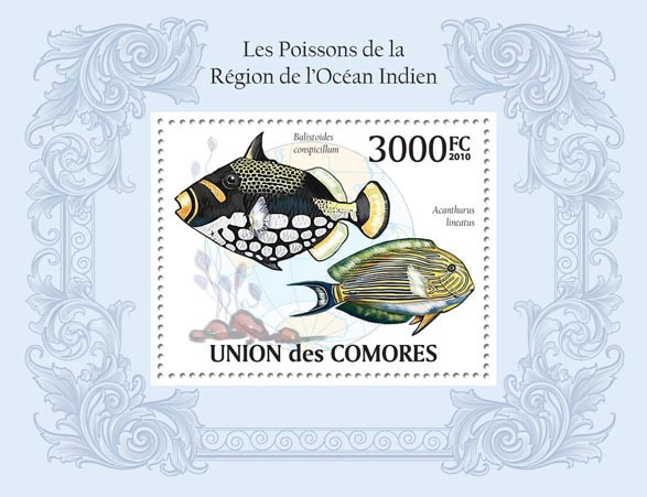 Fishes in Region of Indian Ocean, Balistoides conspicillum, Acanthurus lineatus. - Issue of Comoros postage stamps