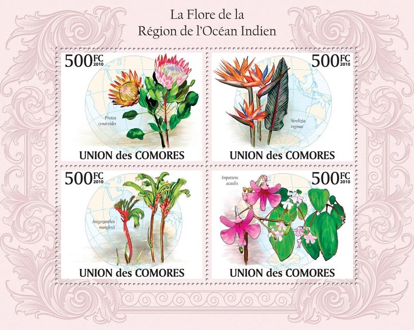 Flora in Region of Indian Region, Protea cynaroides, Impatiens acaulis. Strelizia reginae - Issue of Comoros postage stamps