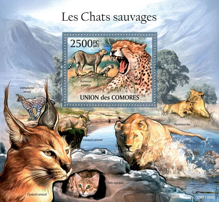 Wild Cats. - Issue of Comoros postage stamps
