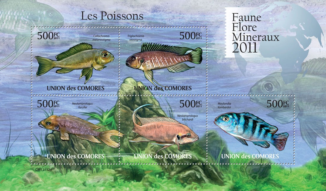 Fishes. - Issue of Comoros postage stamps