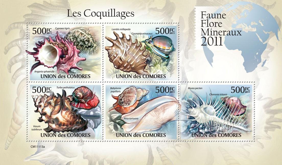 Shells (Cypraea tigris, Charonia tritonis). - Issue of Comoros postage stamps