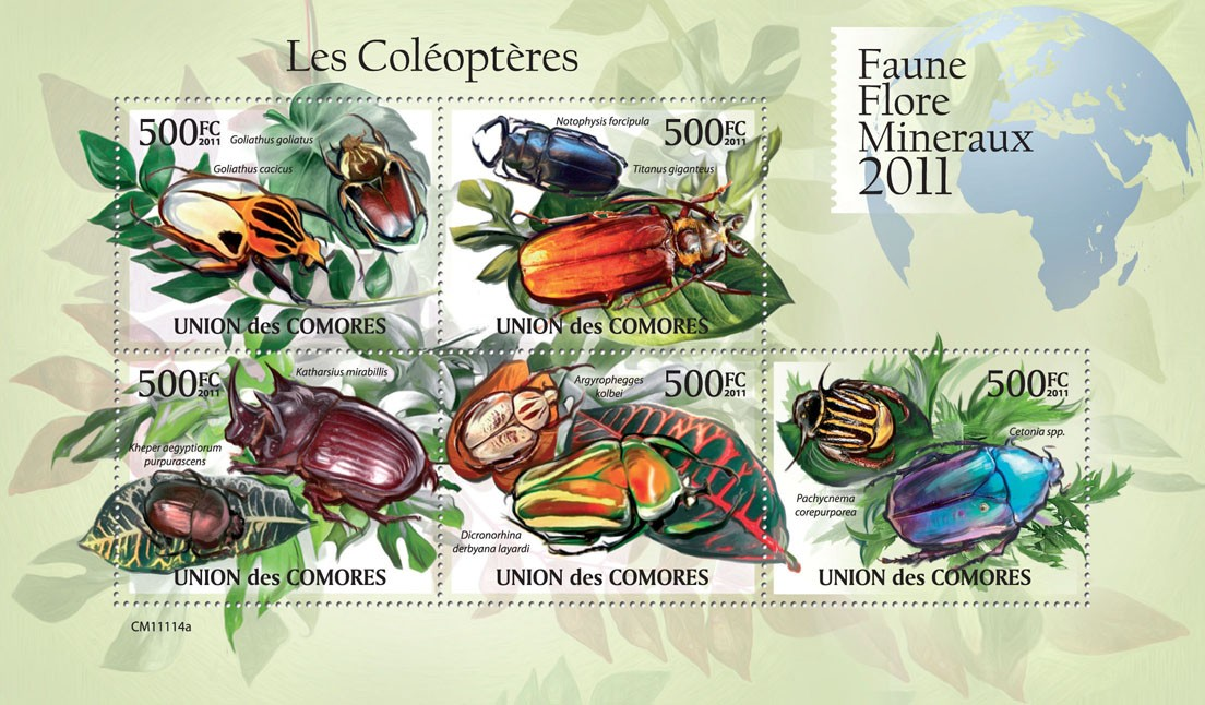 Beetles (Goliathus cacicus, Cetonia spp.) - Issue of Comoros postage stamps