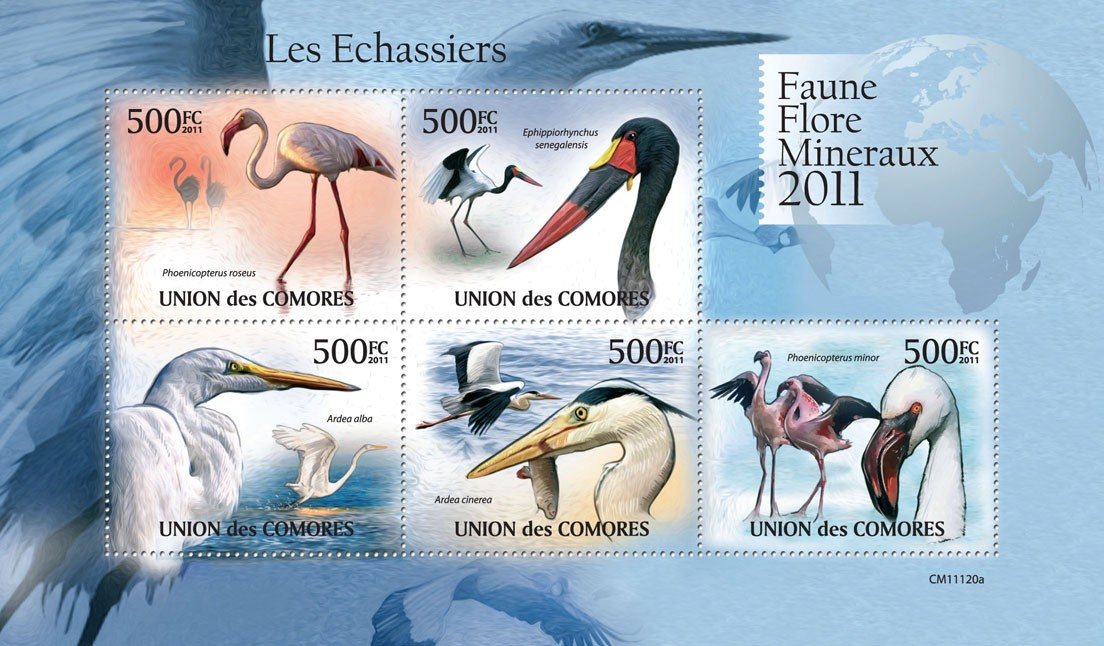 Waders (Phoenicopterus roseus). - Issue of Comoros postage stamps