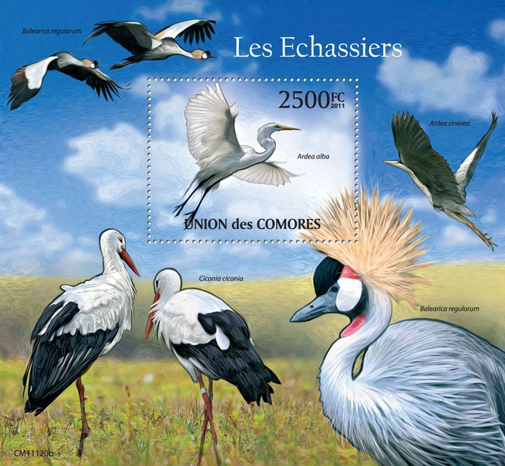 Waders (Ardea alba). - Issue of Comoros postage stamps