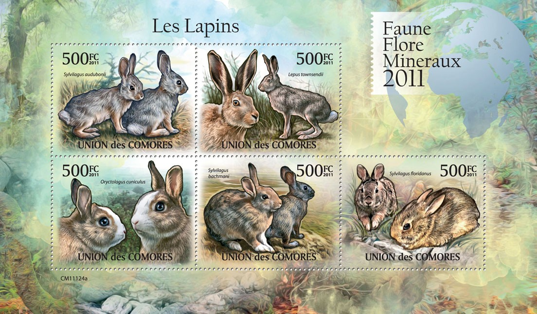 Rabbits (Sylvilagus audubonii,  floridanus). - Issue of Comoros postage stamps