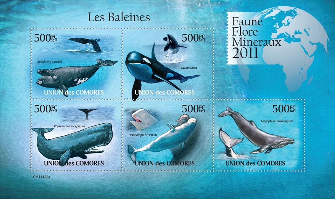 Whales (Eubalaena glacialis, Megaptera novaeangliae). - Issue of Comoros postage stamps