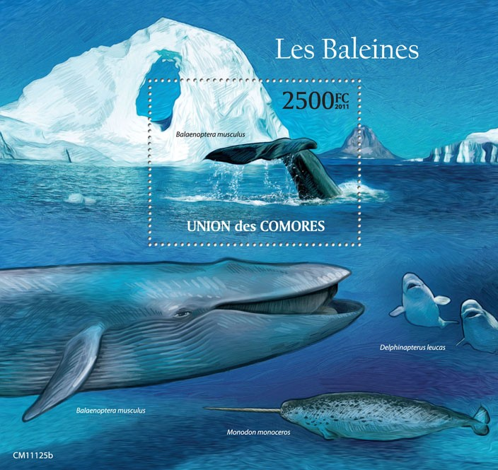 Whales (Balaenoptera musculus). - Issue of Comoros postage stamps