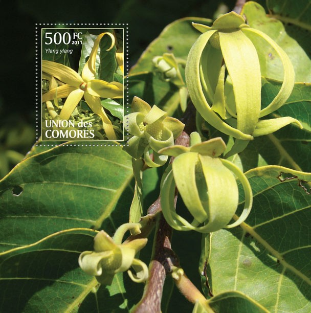 Ylang Ylang - s/s - Issue of Comoros postage stamps