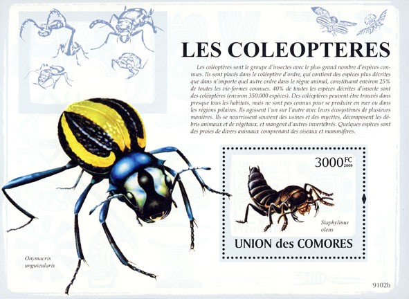 Beetles s/s - Issue of Comoros postage stamps
