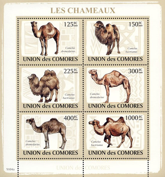 Camels 6v - Issue of Comoros postage stamps