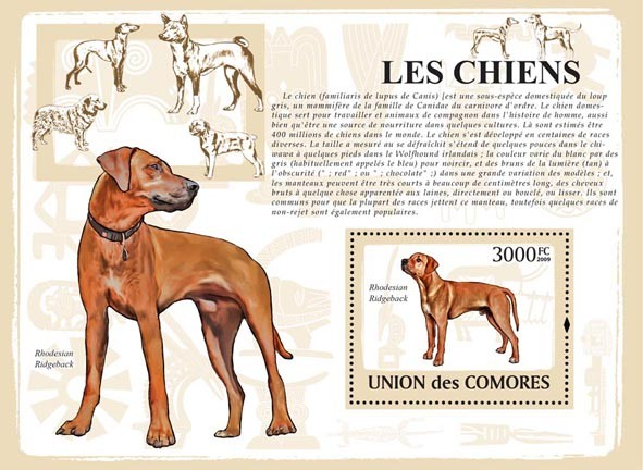 Dogs - Issue of Comoros postage stamps