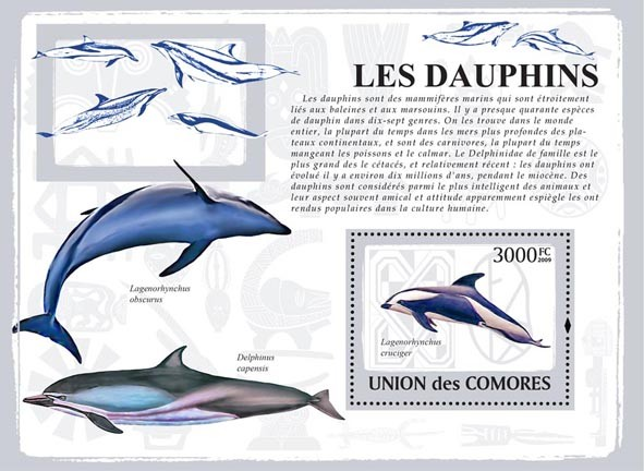 Dolphins - Issue of Comoros postage stamps