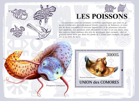 Fishes - Issue of Comoros postage stamps