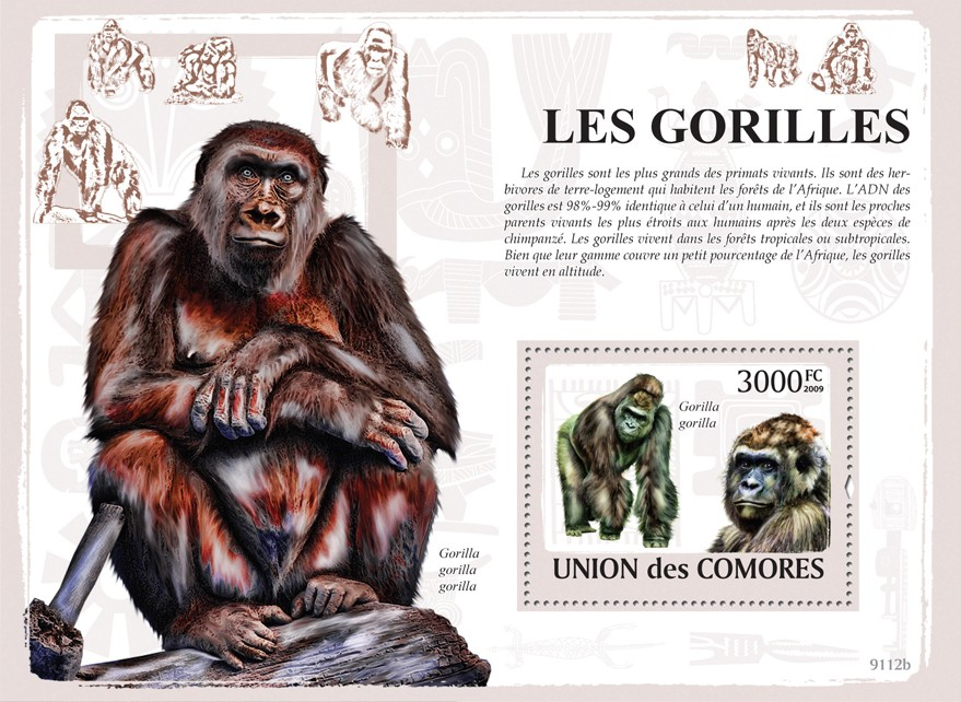 Gorillas - Issue of Comoros postage stamps