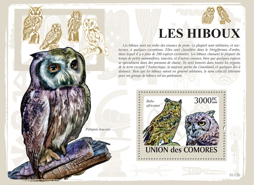 Owls - Issue of Comoros postage stamps