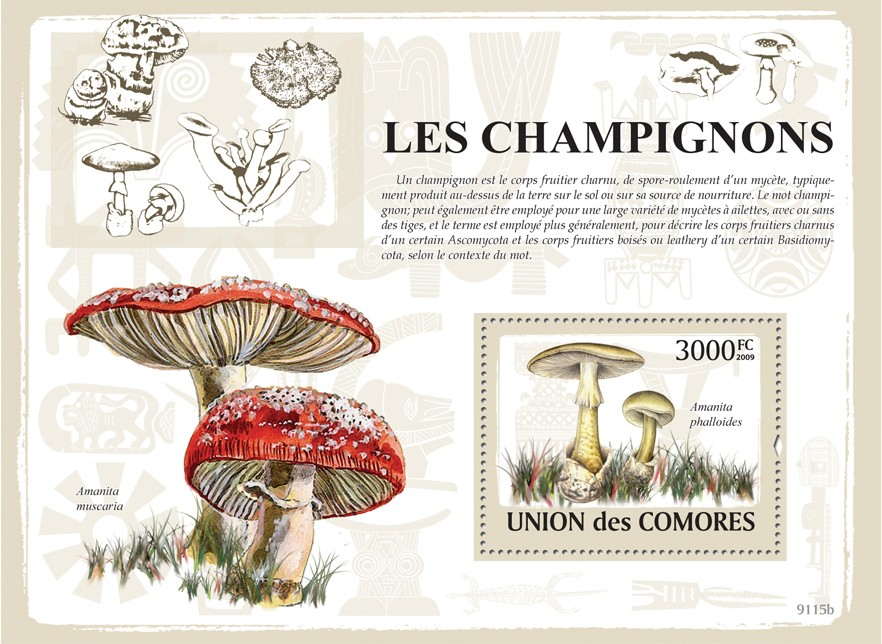 Mushrooms - Issue of Comoros postage stamps