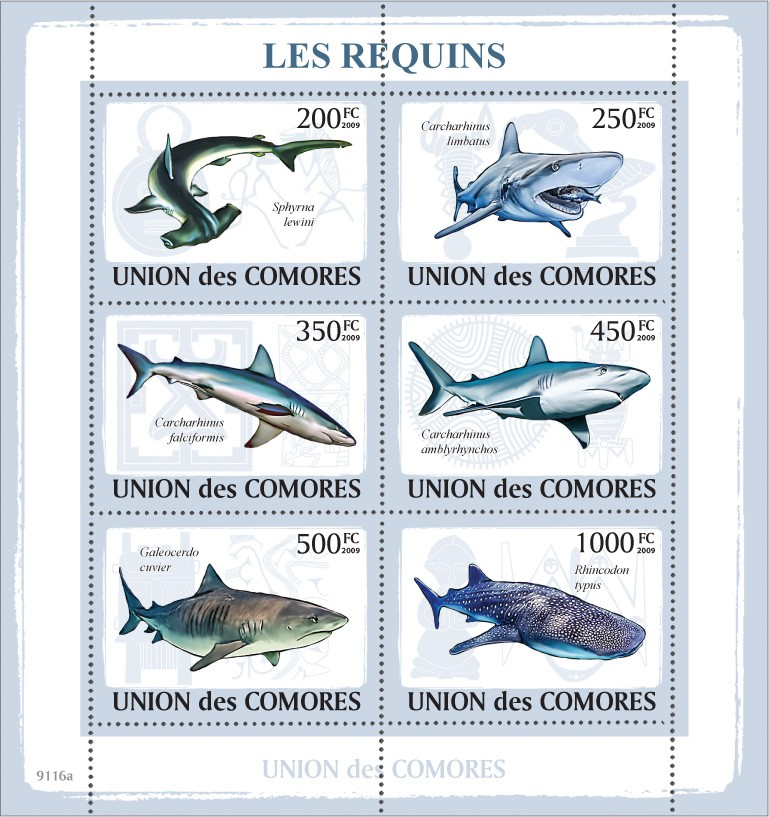 Sharks 6v - Issue of Comoros postage stamps