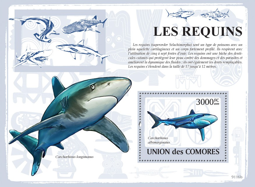 Sharks s/s - Issue of Comoros postage stamps