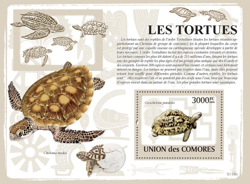 Turtles s/s - Issue of Comoros postage stamps
