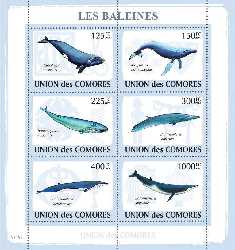 Whales 6v - Issue of Comoros postage stamps
