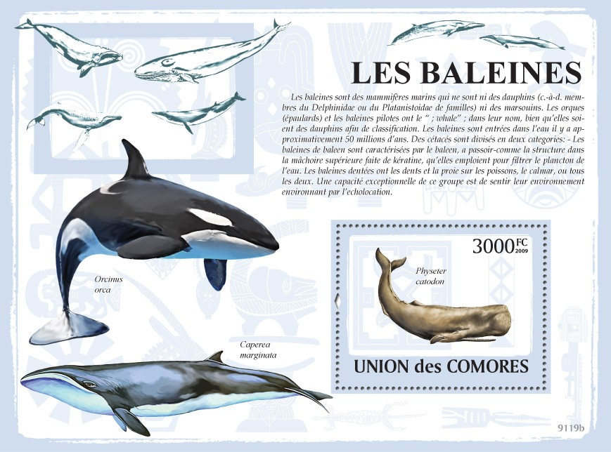 Whales s/s - Issue of Comoros postage stamps