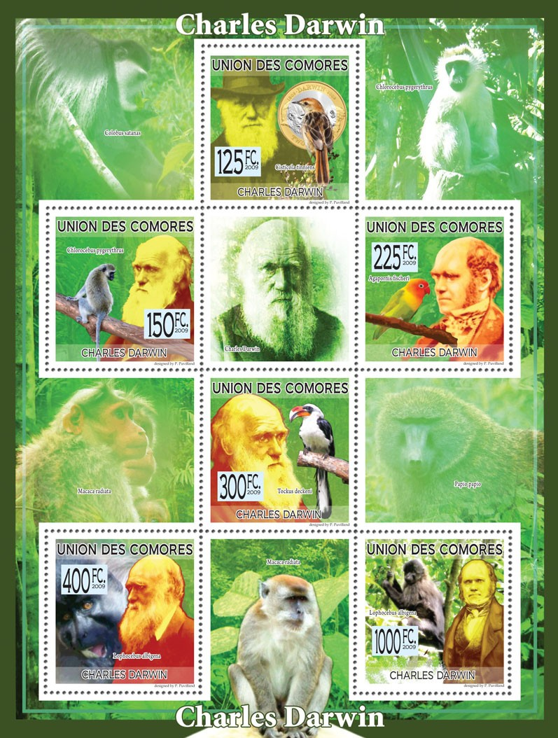 Charles Darwin  -  Monkeys  & Birds - Issue of Comoros postage stamps