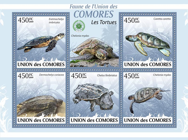 Turtles Eretmochelys imbricata, ?タᆭ, Chelonia mydas?タᆵ - Issue of Comoros postage stamps