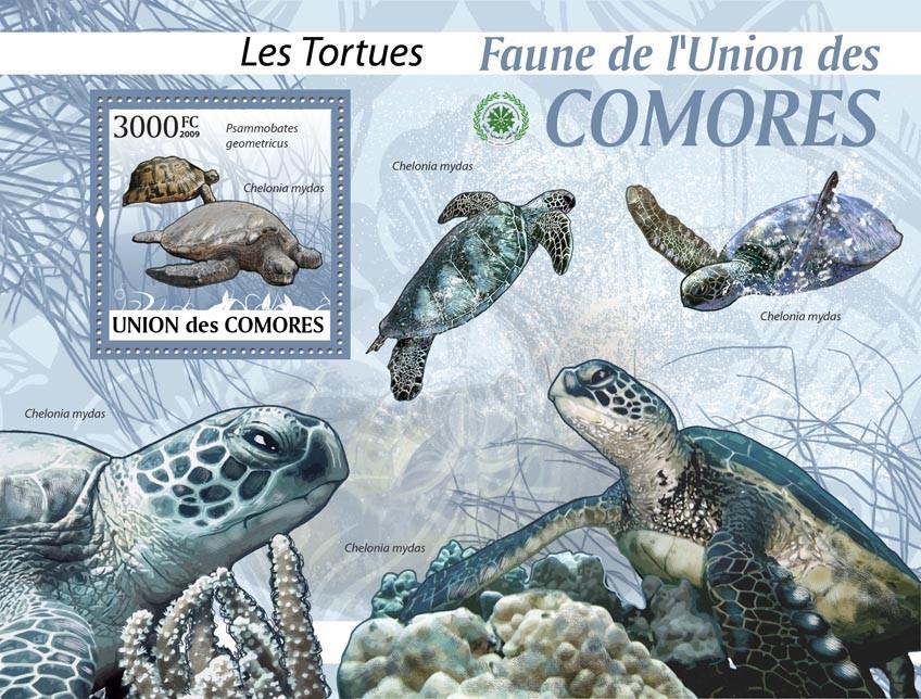 Turtles Psammobates geometricus&Chelonia mydas?タᆵ - Issue of Comoros postage stamps