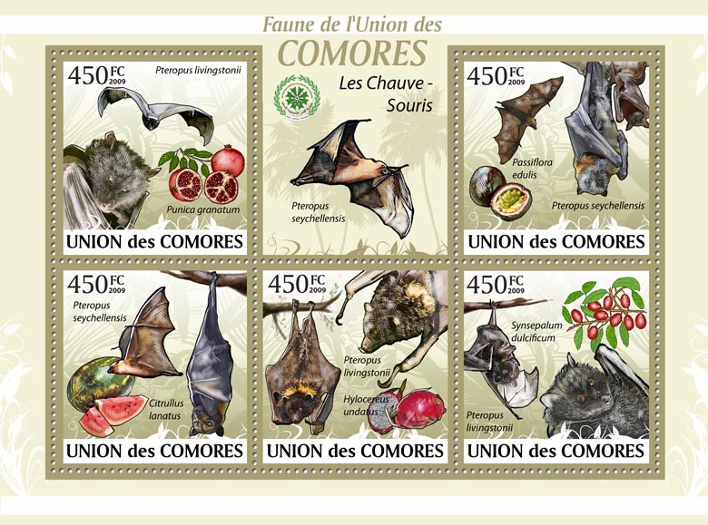 Bats  Pteropus livingstonii?タᆭSynsepalum dulcificum?タᆵ - Issue of Comoros postage stamps