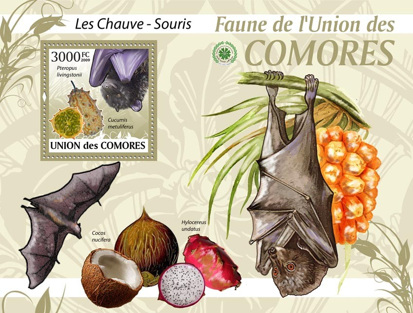 Bats Pteropus livingstonii?タᆵ - Issue of Comoros postage stamps