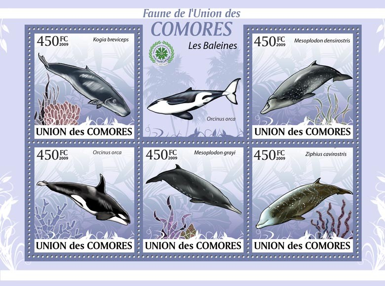 Whales Kogia breviceps?タᆭZiphius cavirostris?タᆵ - Issue of Comoros postage stamps