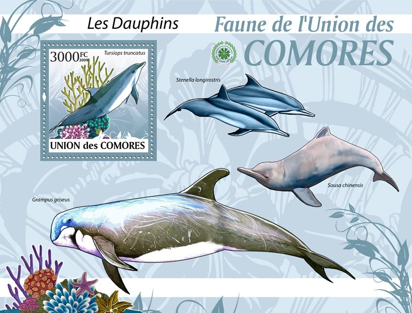Dolphins Tursiops truncatus?タᆵ - Issue of Comoros postage stamps