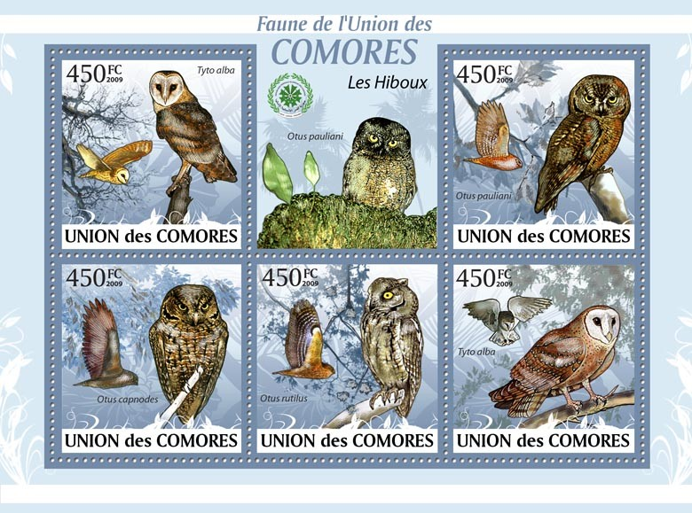 Owls Tylo alba?タᆭ?タᆵ - Issue of Comoros postage stamps