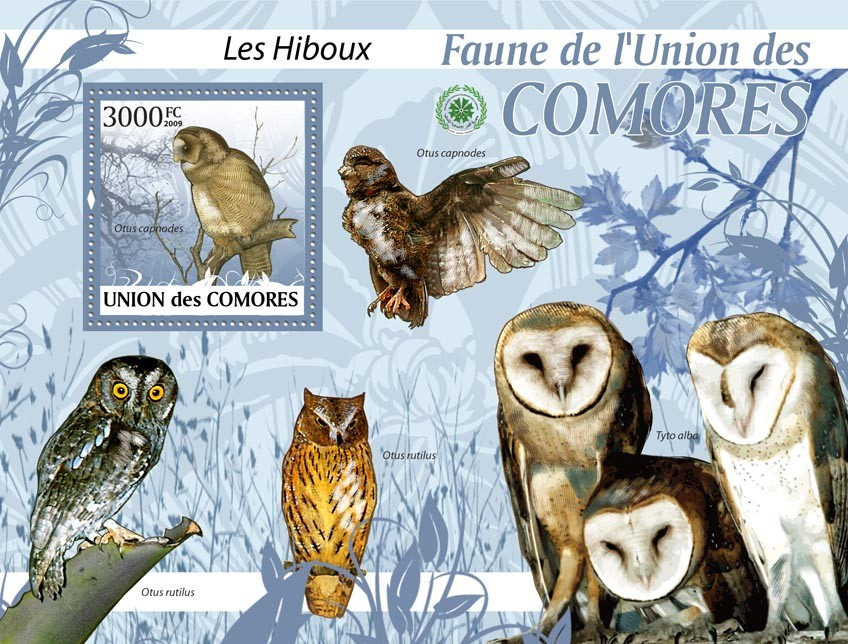 Owls Otus capnodes?タᆵ - Issue of Comoros postage stamps