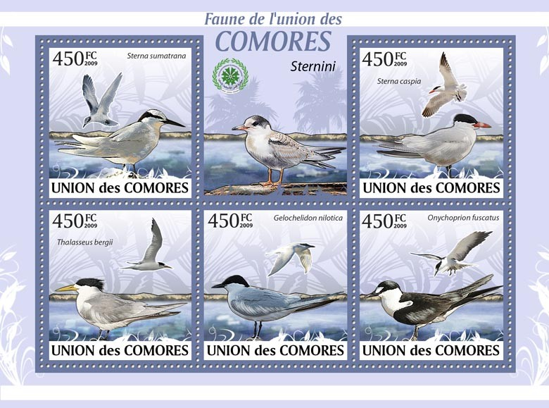 See birds, Sterna sumatrana?タᆭOnychoprion fuscatus?タᆵ - Issue of Comoros postage stamps