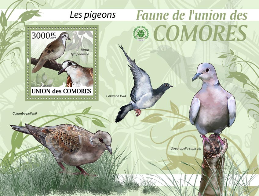 Pigeons, Turtur tympanistria?タᆵ - Issue of Comoros postage stamps