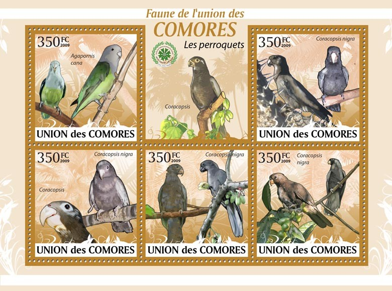 Parrots, Agapornis cana?タᆭCaracopsis nigra?タᆵ - Issue of Comoros postage stamps
