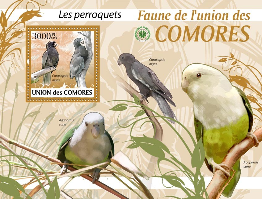 Parrots, Caracopsis nigra?タᆵ - Issue of Comoros postage stamps