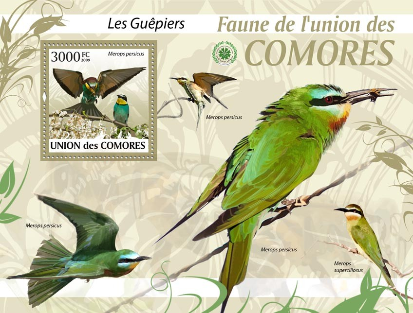 Birds bee-eater, Merops persicus?タᆵ - Issue of Comoros postage stamps