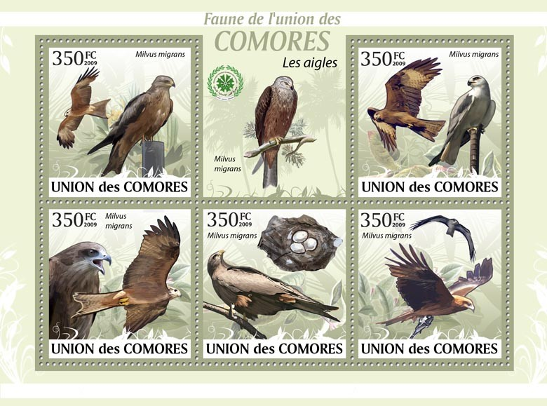 Eagles, Milvus migrans?タᆵ - Issue of Comoros postage stamps