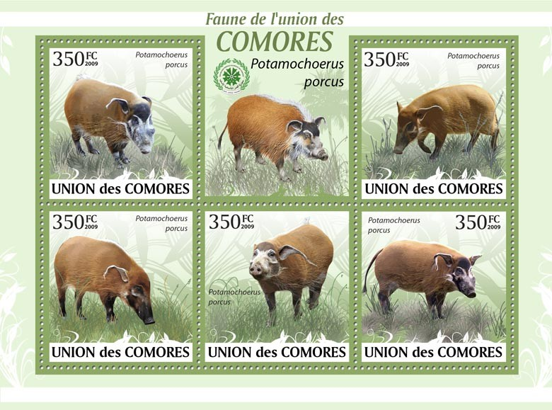 Bush Pigs, Potamochoerus porcus?タᆵ - Issue of Comoros postage stamps