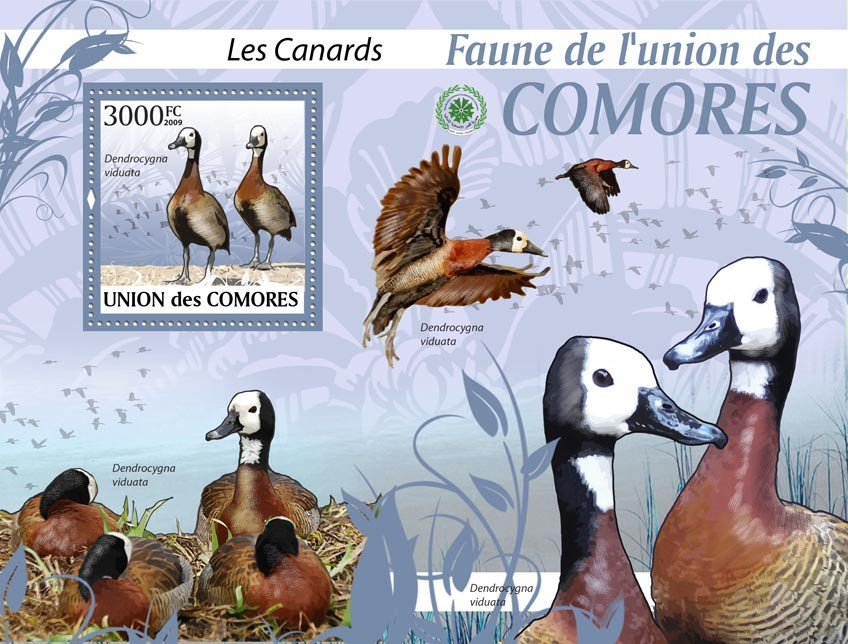 Ducks, Dendrocygna viduata?タᆵ - Issue of Comoros postage stamps