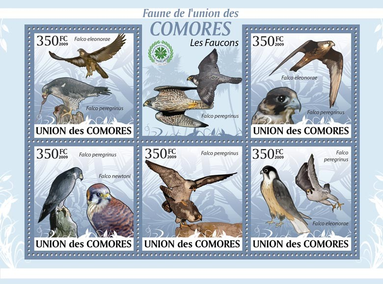 Hawks Falco eleonorae?タᆭFalco peregrinus?タᆵ - Issue of Comoros postage stamps