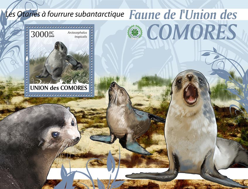 Sea Lion Arctocephalus tropicalis?タᆵ - Issue of Comoros postage stamps