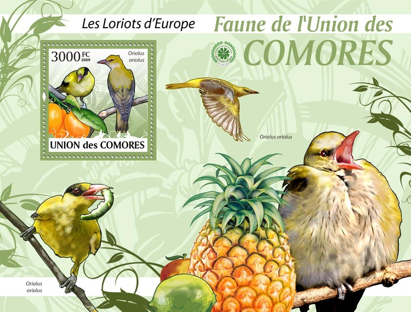 European Golden Oriole & FruitsOriolus oriolus?タᆵ - Issue of Comoros postage stamps